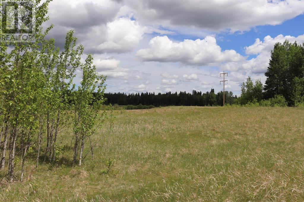 Range Road 131  16 West Highway, Rural Yellowhead County, Alberta  T0E 1S0 - Photo 8 - A1117373