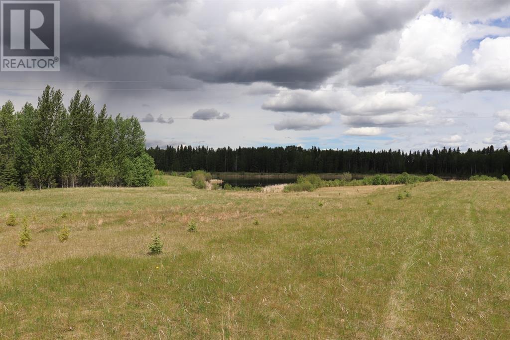 Range Road 131  16 West Highway, Rural Yellowhead County, Alberta  T0E 1S0 - Photo 9 - A1117373