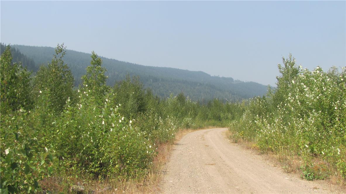 136acres Sugar Lake-Sihlis Road,, Vernon, British Columbia  V1H 2B1 - Photo 22 - 10139930