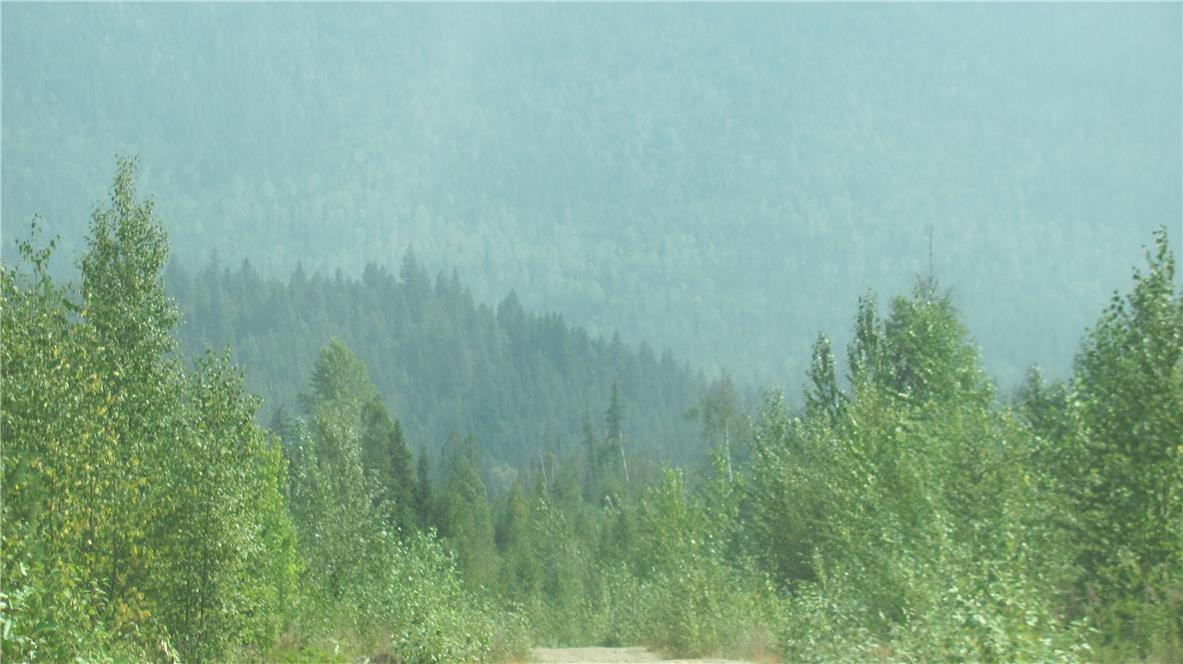 136acres Sugar Lake-Sihlis Road,, Vernon, British Columbia  V1H 2B1 - Photo 8 - 10139930