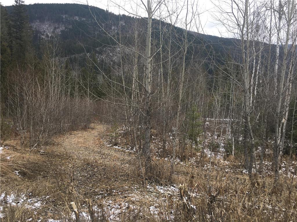 136acres Sugar Lake-Sihlis Road,, Vernon, British Columbia  V1H 2B1 - Photo 6 - 10139930