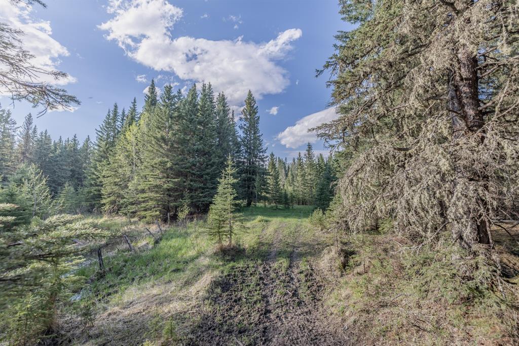 231175 Bracken Road, Rural Rocky View County, Alberta  T0L 0K0 - Photo 14 - A1116621