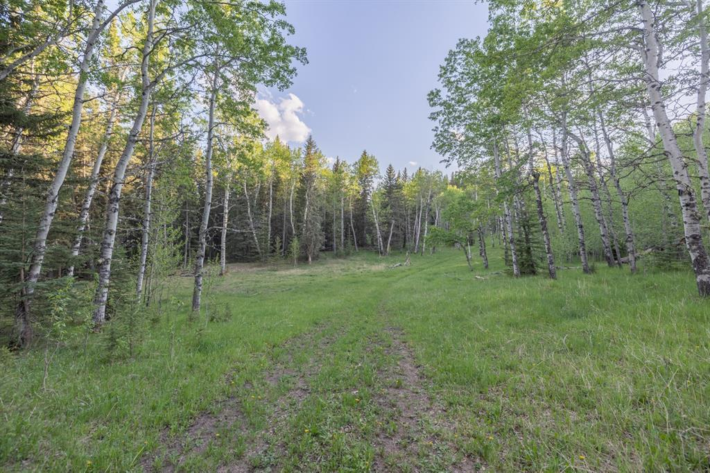 231175 Bracken Road, Rural Rocky View County, Alberta  T0L 0K0 - Photo 24 - A1116621