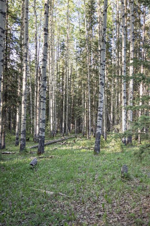 231175 Bracken Road, Rural Rocky View County, Alberta  T0L 0K0 - Photo 16 - A1116621