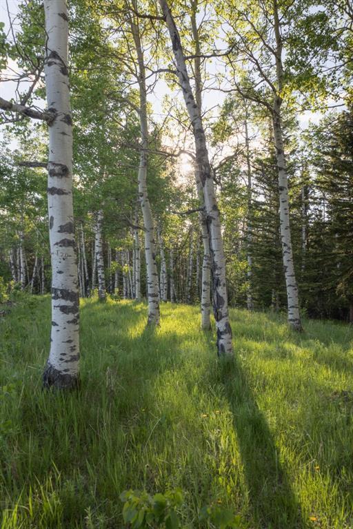 231175 Bracken Road, Rural Rocky View County, Alberta  T0L 0K0 - Photo 17 - A1116621