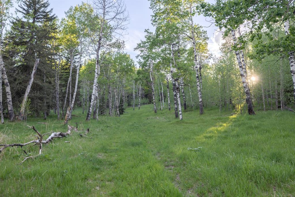 231175 Bracken Road, Rural Rocky View County, Alberta  T0L 0K0 - Photo 23 - A1116621