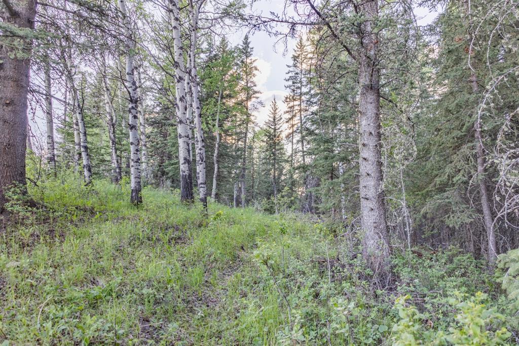 231175 Bracken Road, Rural Rocky View County, Alberta  T0L 0K0 - Photo 21 - A1116621