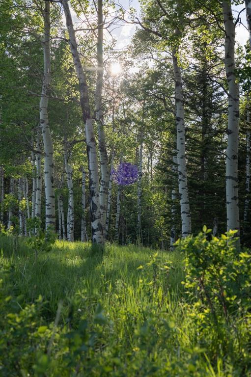 231175 Bracken Road, Rural Rocky View County, Alberta  T0L 0K0 - Photo 18 - A1116621