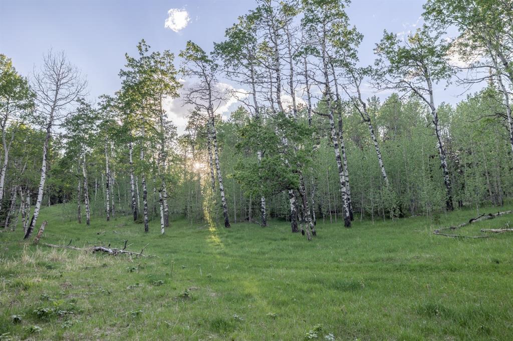 231175 Bracken Road, Rural Rocky View County, Alberta  T0L 0K0 - Photo 22 - A1116621