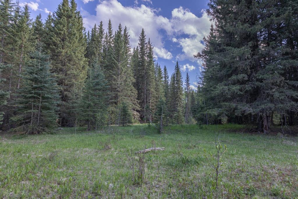 231175 Bracken Road, Rural Rocky View County, Alberta  T0L 0K0 - Photo 13 - A1116621