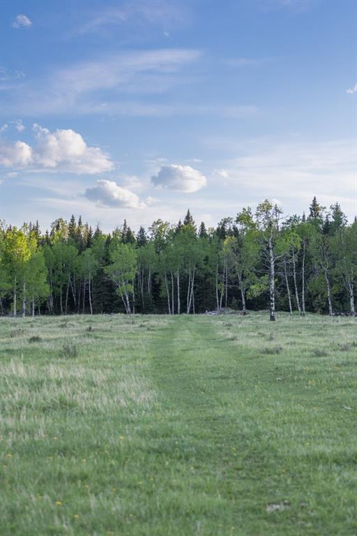 231175 Bracken Road, Rural Rocky View County, Alberta  T0L 0K0 - Photo 30 - A1116621