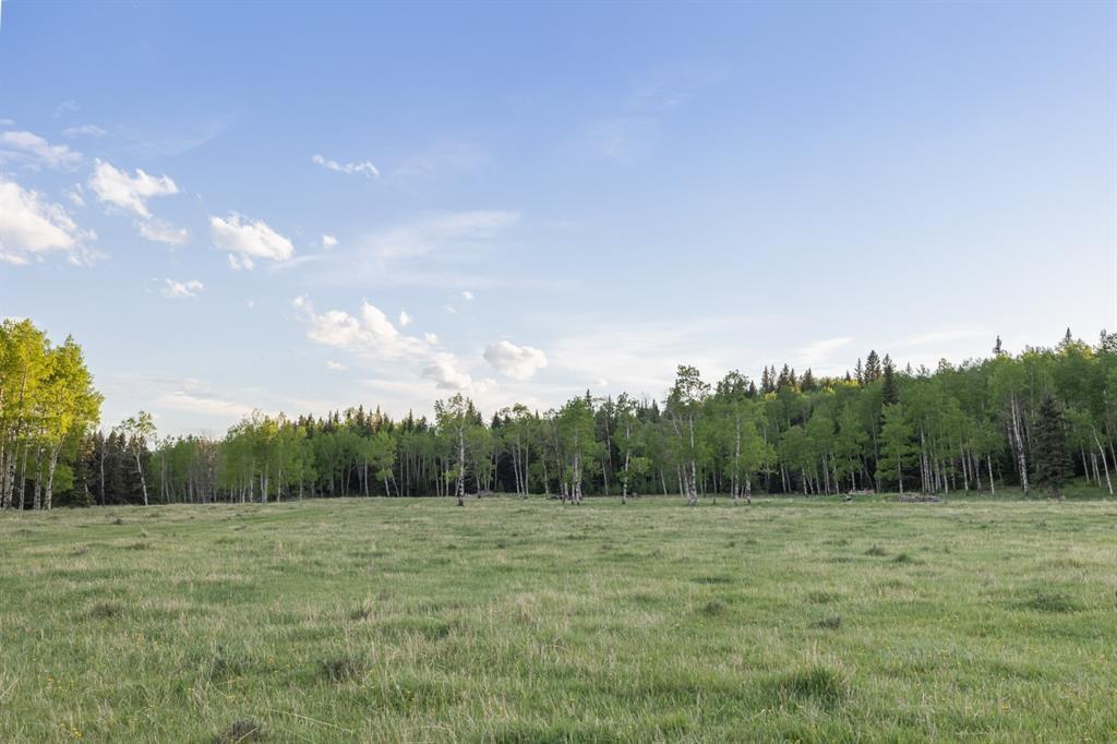 231175 Bracken Road, Rural Rocky View County, Alberta  T0L 0K0 - Photo 29 - A1116621