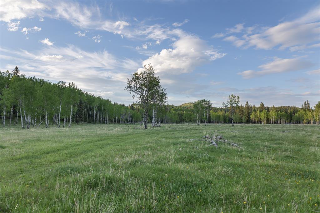 231175 Bracken Road, Rural Rocky View County, Alberta  T0L 0K0 - Photo 28 - A1116621