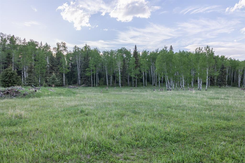 231175 Bracken Road, Rural Rocky View County, Alberta  T0L 0K0 - Photo 26 - A1116621