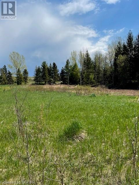 Lt 18 A Concession, Meaford (Municipality), Ontario  N0H 1B0 - Photo 4 - 40115083