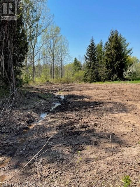 Lt 18 A Concession, Meaford (Municipality), Ontario  N0H 1B0 - Photo 10 - 40115083