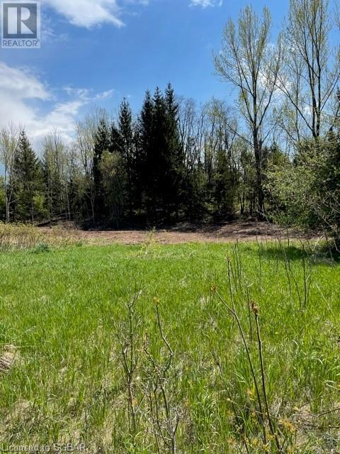 Lt 18 A Concession, Meaford (Municipality), Ontario  N0H 1B0 - Photo 1 - 40115083