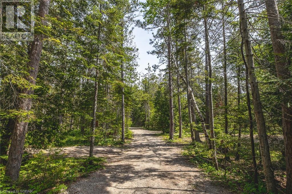 6313 6 Highway, Tobermory, Ontario  N0H 2R0 - Photo 24 - 40125301