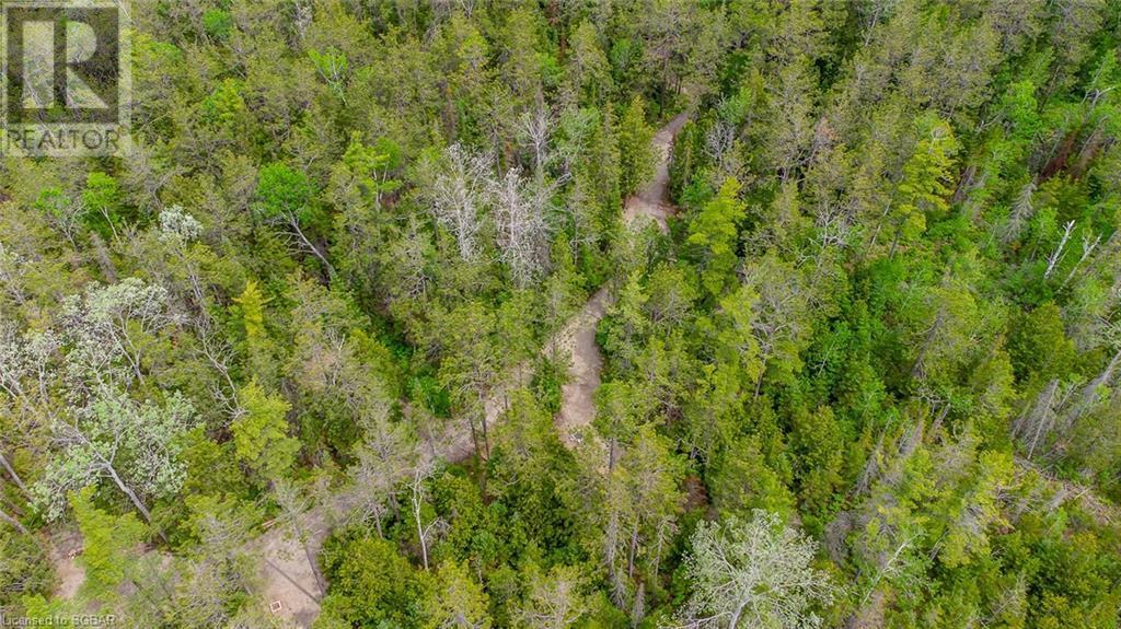 6313 6 Highway, Tobermory, Ontario  N0H 2R0 - Photo 2 - 40125541