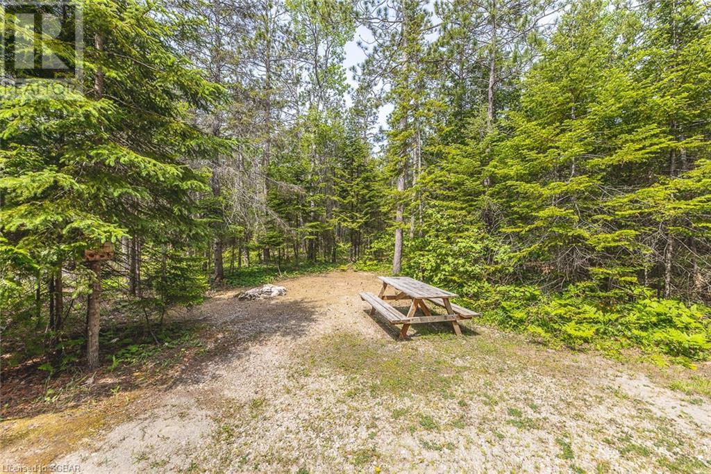 6313 6 Highway, Tobermory, Ontario  N0H 2R0 - Photo 14 - 40125541