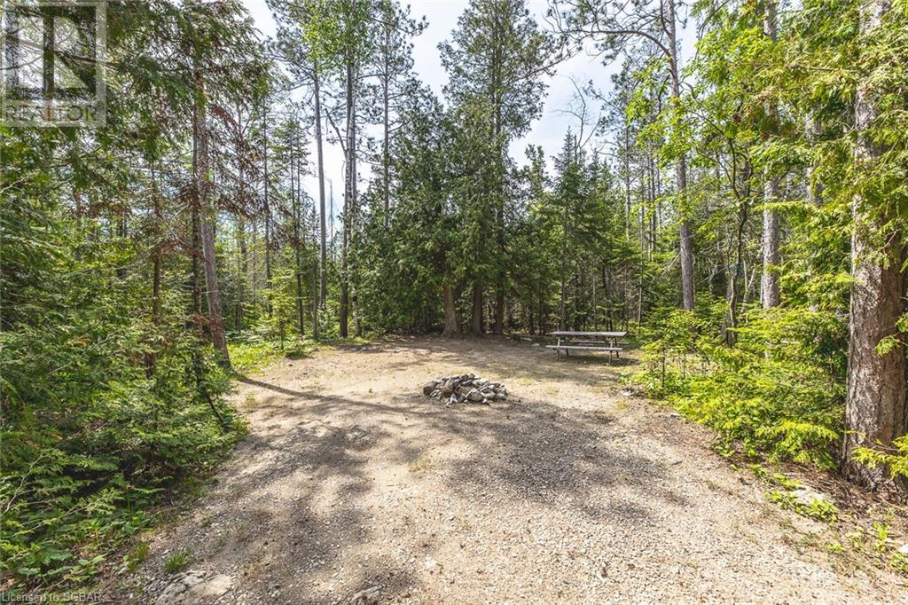 6313 6 Highway, Tobermory, Ontario  N0H 2R0 - Photo 23 - 40125541