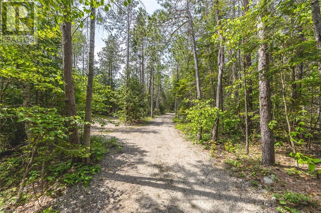 6313 6 Highway, Tobermory, Ontario  N0H 2R0 - Photo 22 - 40125541