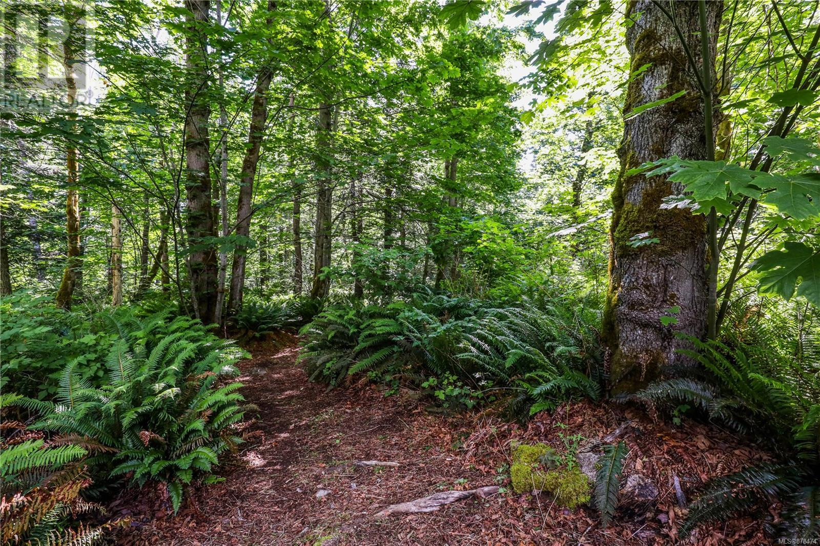 MLS® #878474 - Courtenay For sale Image #11