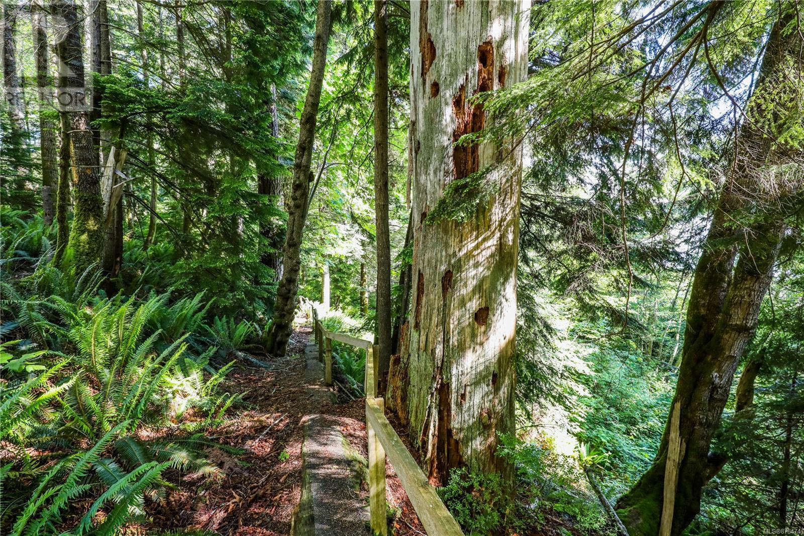 MLS® #878474 - Courtenay For sale Image #10