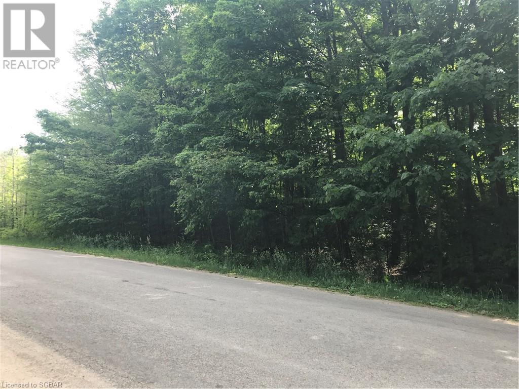 Lt A Champlain Road, Tiny, Ontario  L9M 0C1 - Photo 5 - 40127219