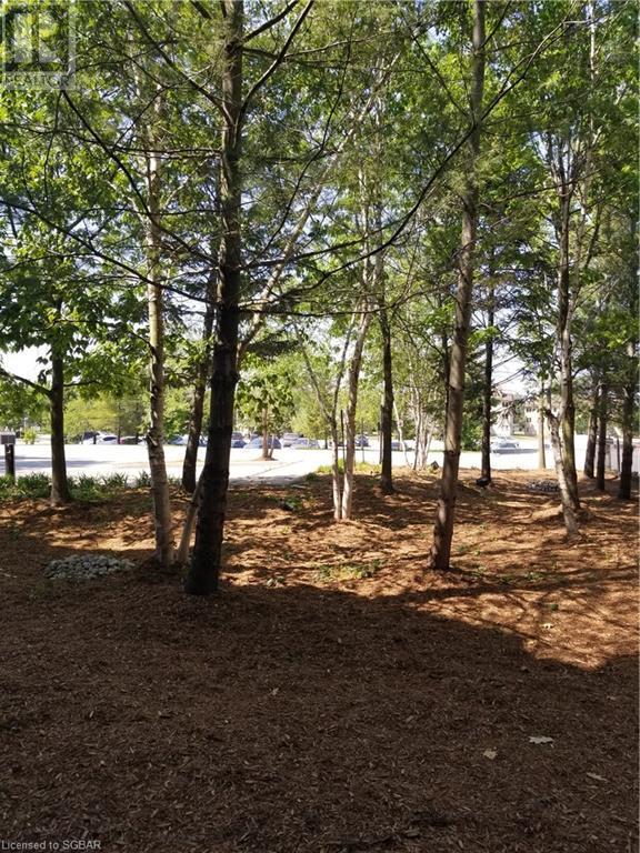 156 Jozo Weider Boulevard Unit# 127, The Blue Mountains, Ontario  L9Y 3Z2 - Photo 26 - 40126456