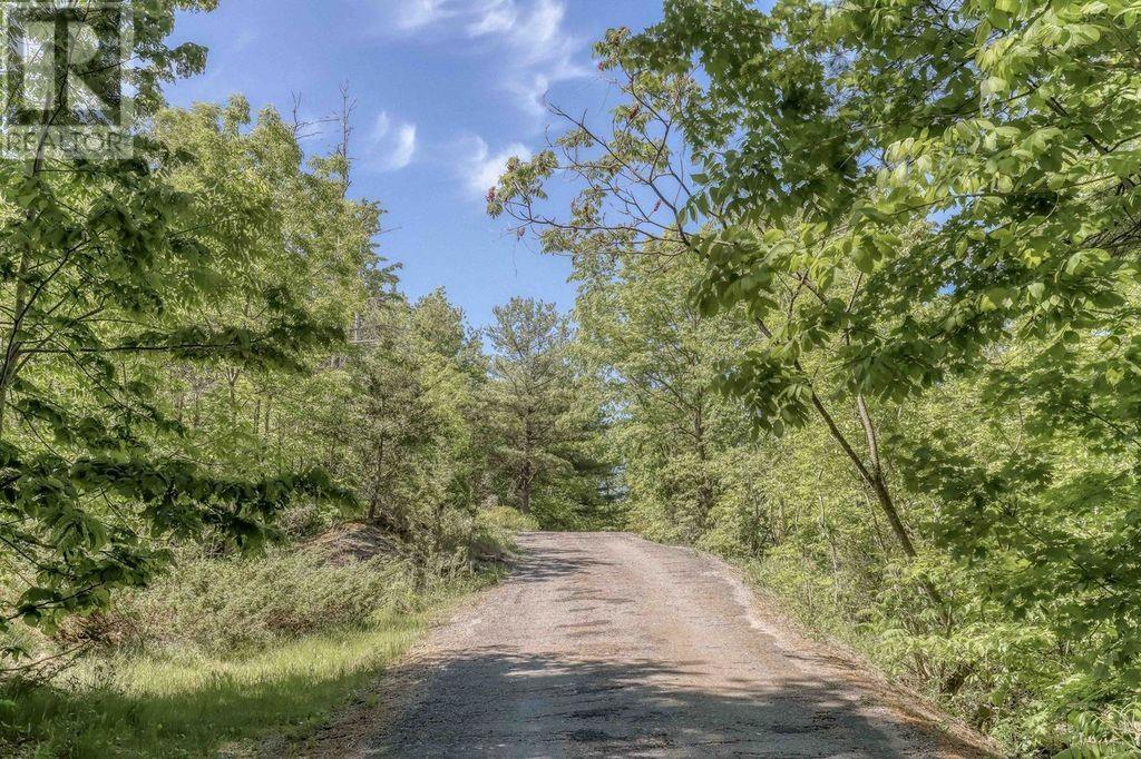 5253 Opinicon Rd, South Frontenac, Ontario  K0H 2L0 - Photo 3 - K21003587