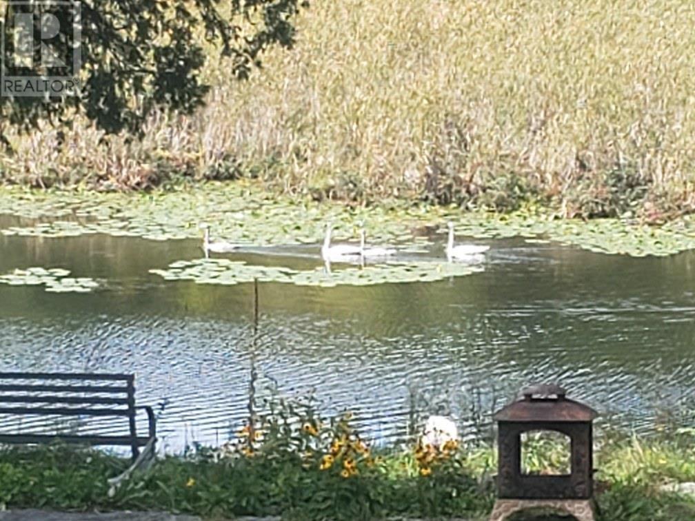 285 Mud Lake Rd, Odessa, Ontario  K0H 2H0 - Photo 48 - K21003653