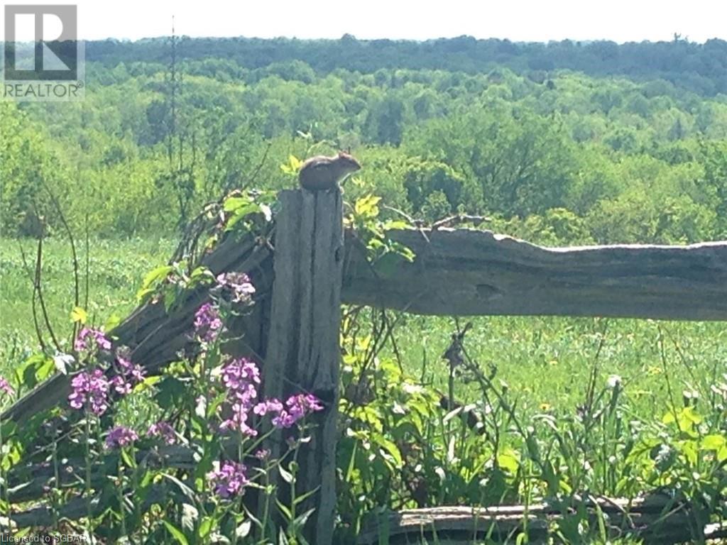 1614 Horseshoe Valley Road E, Oro-Medonte, Ontario  L0K 1E0 - Photo 15 - 40094808