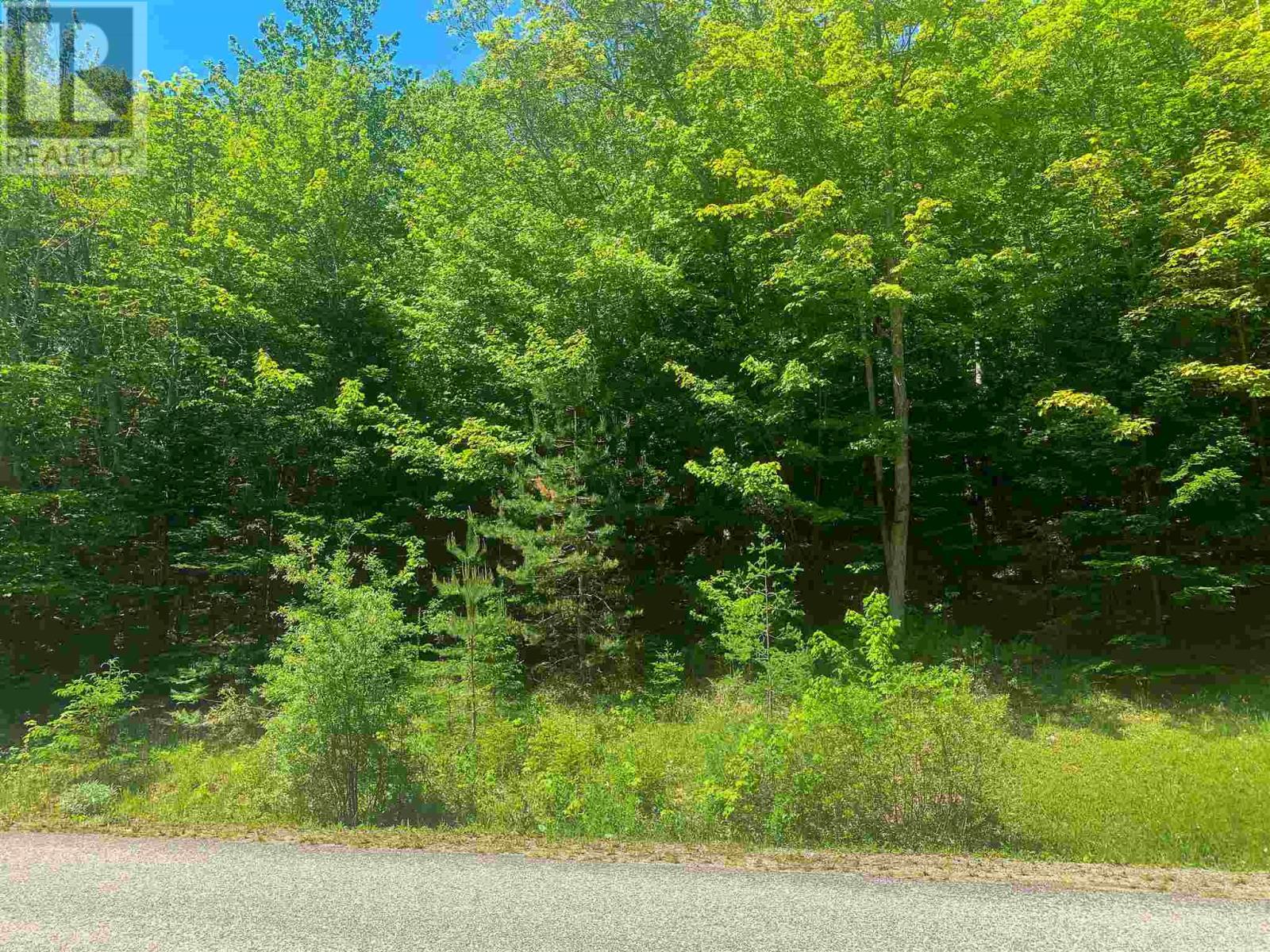 Lot 9 Mood Road, Summerville, Nova Scotia  B5A 5N6 - Photo 3 - 202115200