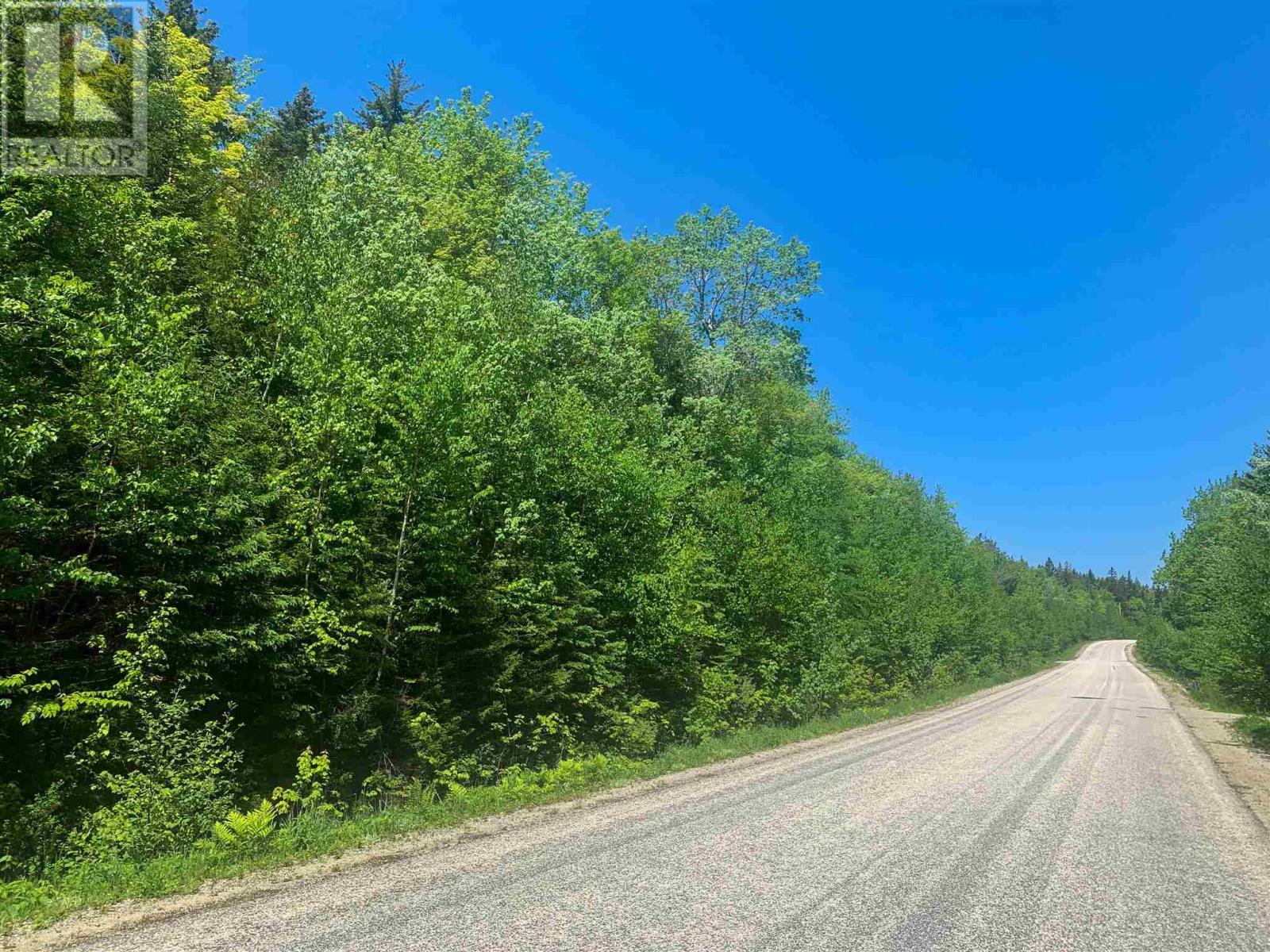 Lot 9 Mood Road, Summerville, Nova Scotia  B5A 5N6 - Photo 5 - 202115200