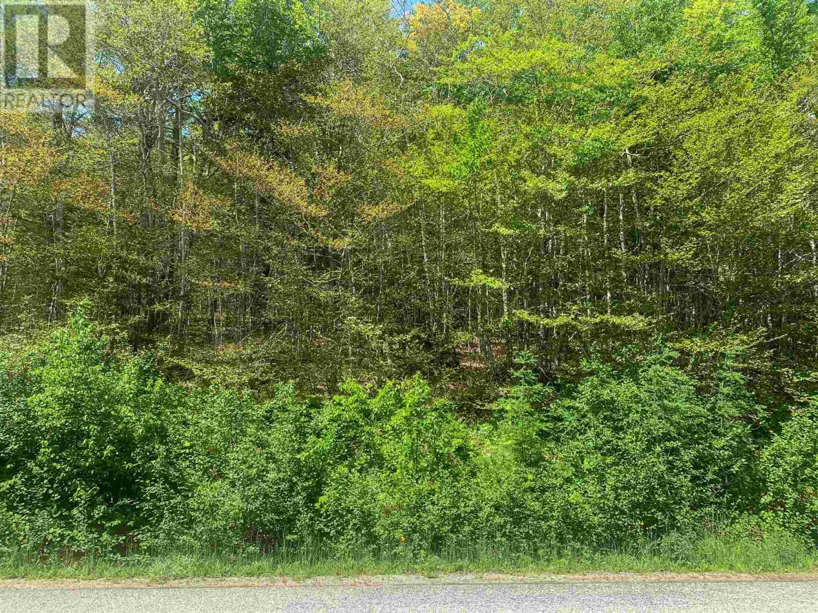 Lot 9 Mood Road, Summerville, Nova Scotia  B5A 5N6 - Photo 6 - 202115200