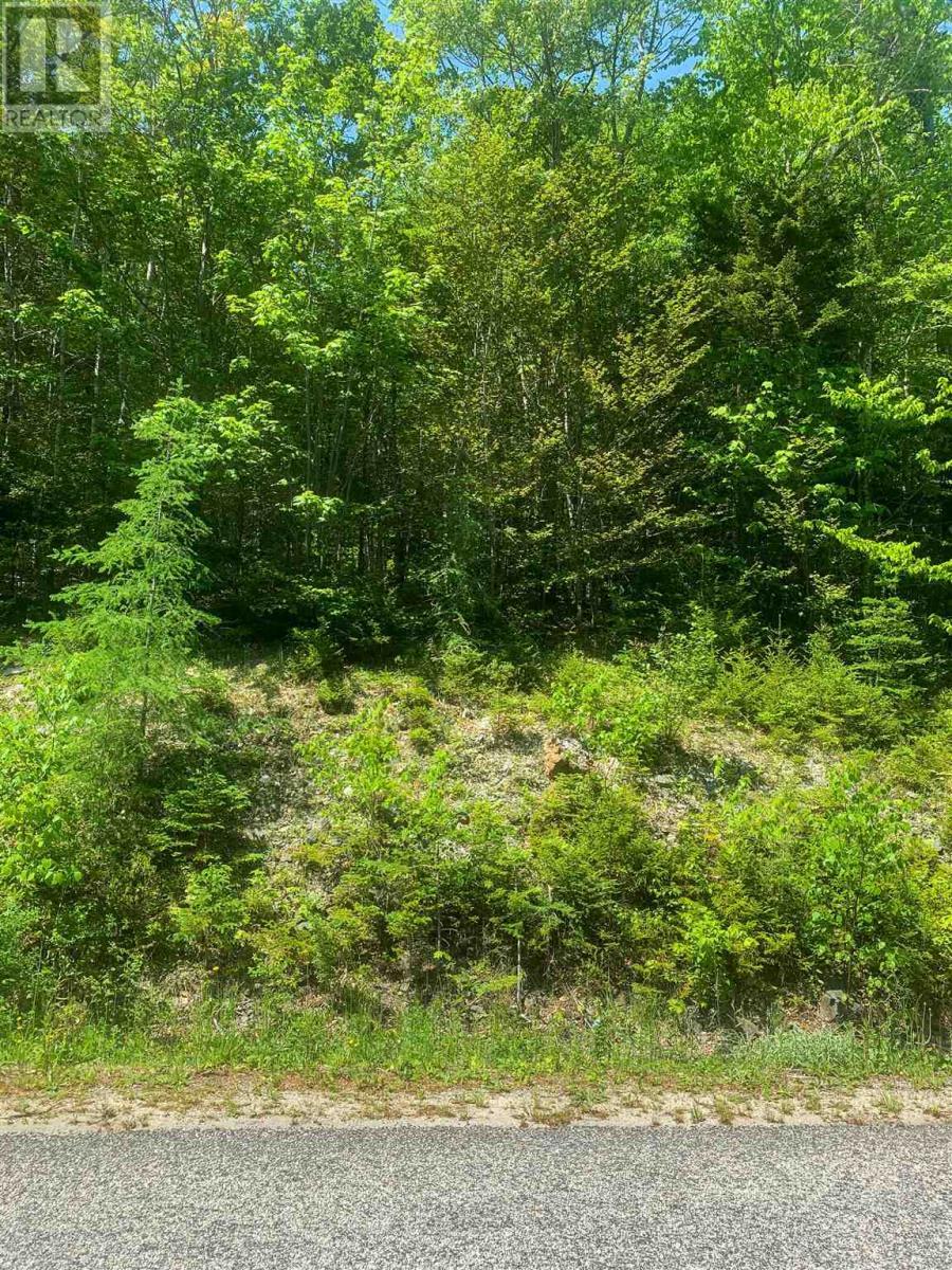 Lot 9 Mood Road, Summerville, Nova Scotia  B5A 5N6 - Photo 8 - 202115200