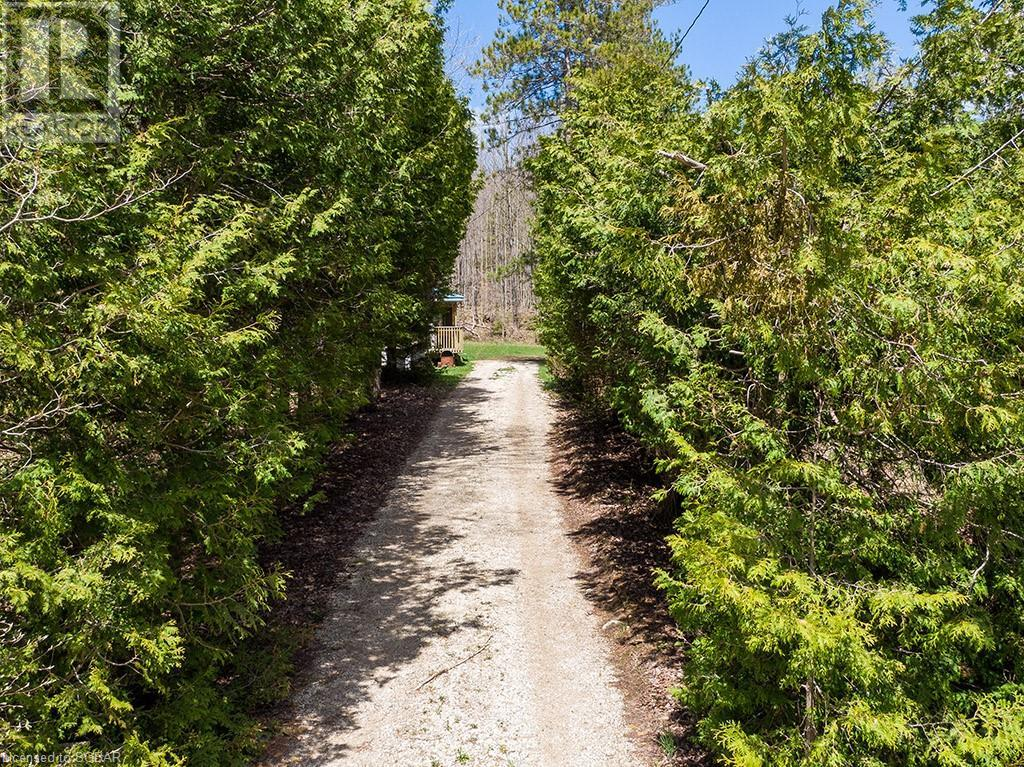 467063 12th B Concession, Grey Highlands, Ontario  N0C 1C0 - Photo 7 - 40130729