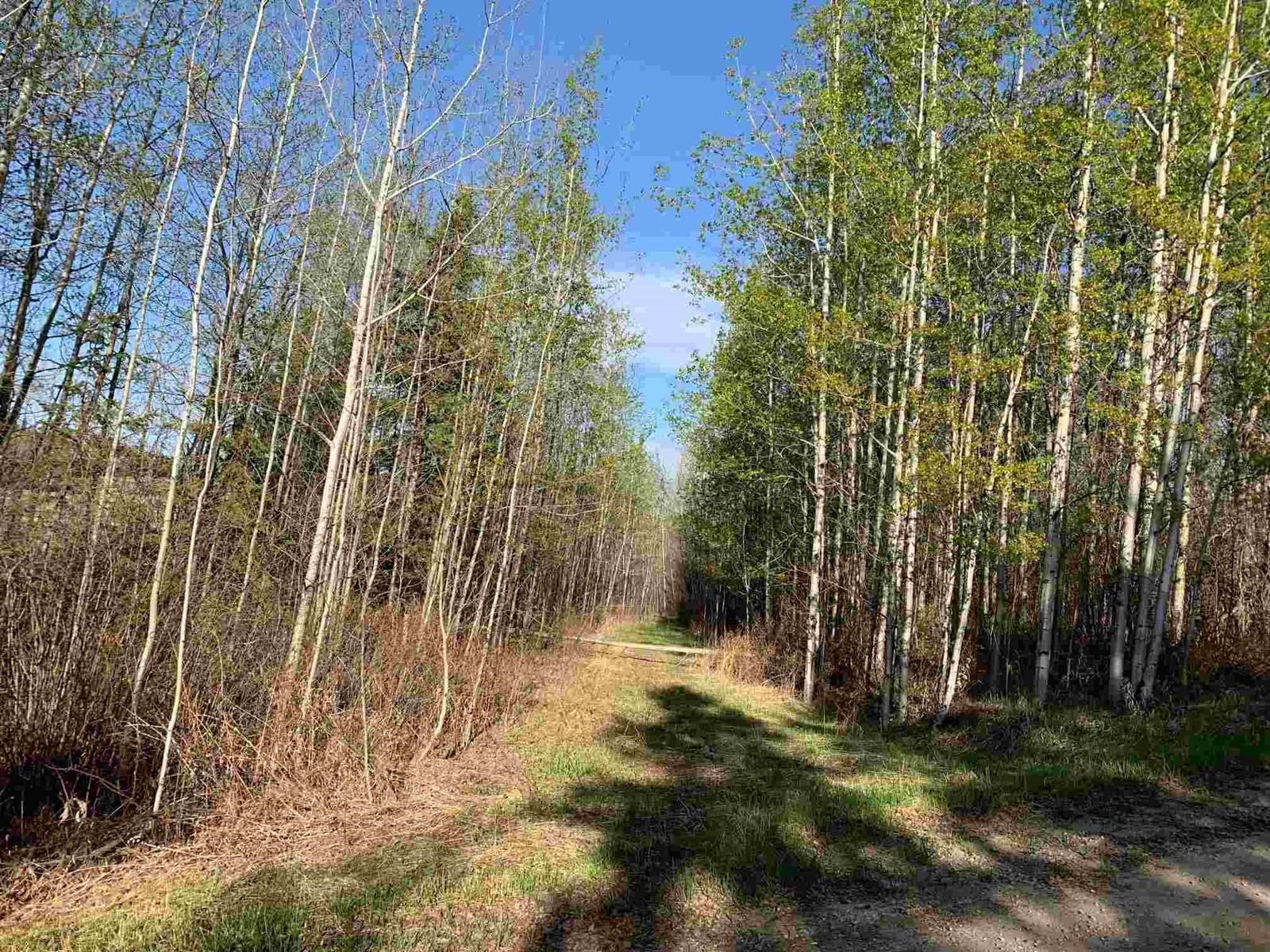 0 Na, Rural Parkland County, Alberta  T0E 2K0 - Photo 2 - E4250294