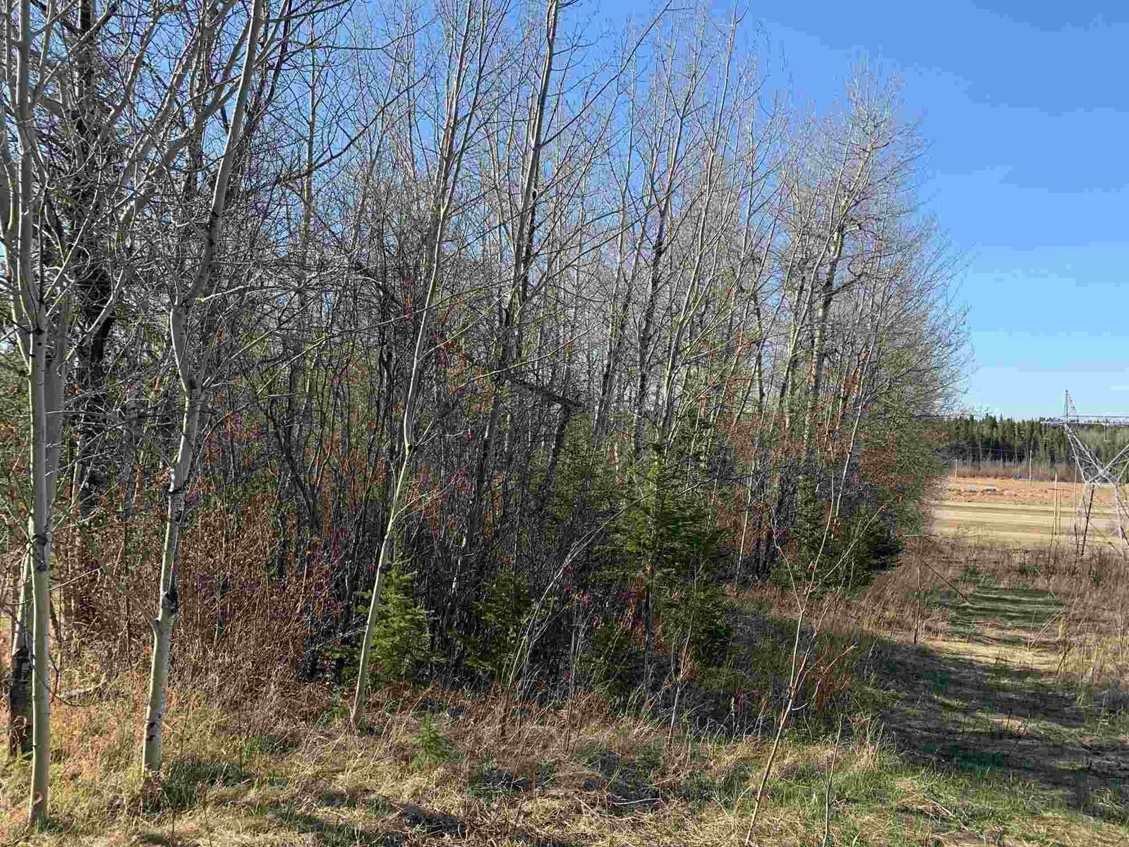 0 Na, Rural Parkland County, Alberta  T0E 2K0 - Photo 5 - E4250294