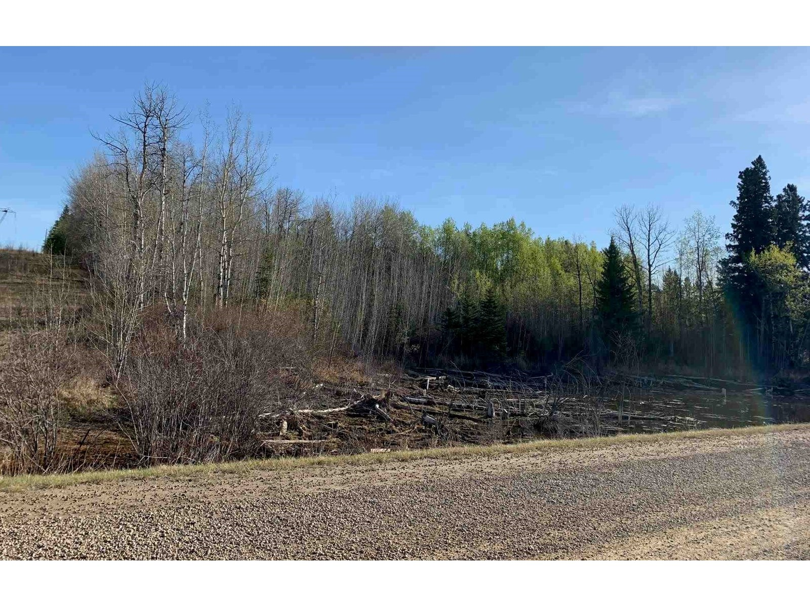 0 Na, Rural Parkland County, Alberta  T0E 2K0 - Photo 6 - E4250294
