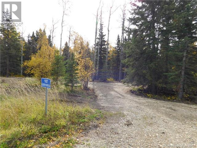 118 Blueberry Meadows Lane, Rural Clearwater County, Alberta  T0M 1H0 - Photo 5 - CA0180591