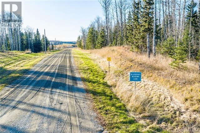 118 Blueberry Meadows Lane, Rural Clearwater County, Alberta  T0M 1H0 - Photo 18 - CA0180591