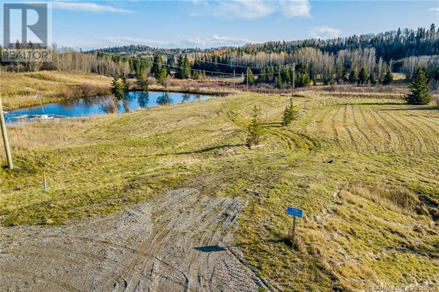 118 Blueberry Meadows Lane, Rural Clearwater County, Alberta  T0M 1H0 - Photo 27 - CA0180591