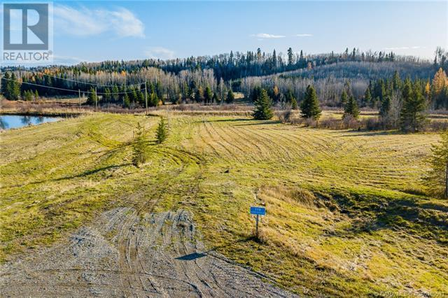 118 Blueberry Meadows Lane, Rural Clearwater County, Alberta  T0M 1H0 - Photo 28 - CA0180591