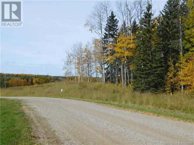 122 Blueberry Meadows Lane, Rural Clearwater County, Alberta  T0M 1H0 - Photo 8 - CA0180592