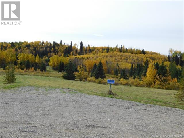 122 Blueberry Meadows Lane, Rural Clearwater County, Alberta  T0M 1H0 - Photo 10 - CA0180592