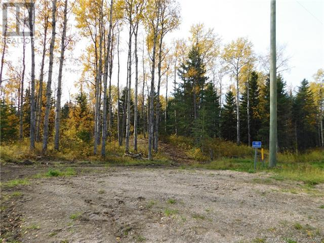 122 Blueberry Meadows Lane, Rural Clearwater County, Alberta  T0M 1H0 - Photo 2 - CA0180592