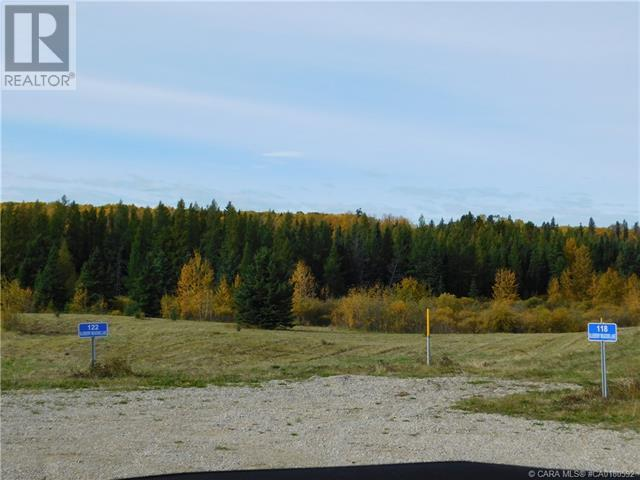 122 Blueberry Meadows Lane, Rural Clearwater County, Alberta  T0M 1H0 - Photo 1 - CA0180592