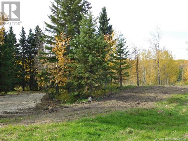 122 Blueberry Meadows Lane, Rural Clearwater County, Alberta  T0M 1H0 - Photo 9 - CA0180592